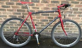 19 inch 1995 Raleigh M-trax TI 1000 Titanium Adults mountain bike bicycle