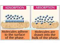 What is Difference between Absorption and Adsorption ? - JavaTpoint
