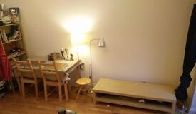 Dinning Table, Black Table, 2 Chairs, IKEA Stool, Lamps, Shelve, and TV Stand