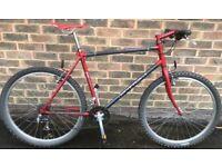 19 inch 1995 Raleigh M-trax TI 1000 Titanium Adults mountain bike bicycle