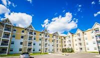 Sky Pointe- 2 Bedroom- One Month Free Rent!