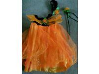 Halloween pumpkin fancy dress 2 years