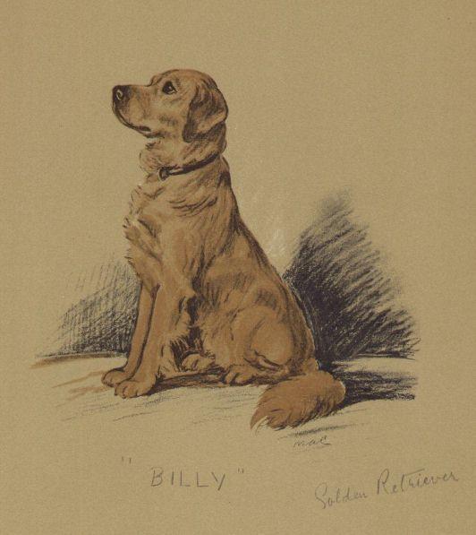 Golden Retriever - Lucy Dawson Dog Print - MATTED