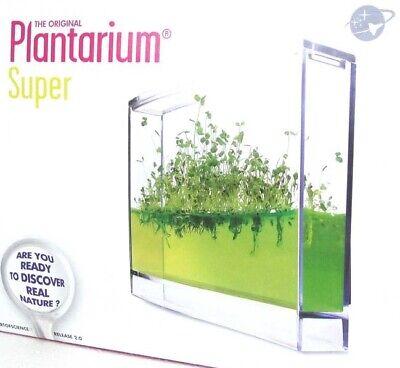 Plantarium Pflanzenwachstum beobachten Mini Indoor Gel Gewächshaus Observatorium gebraucht kaufen  Celle