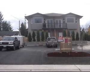 3 houses for rent