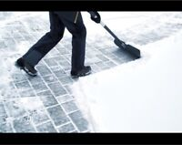AFFORDABLE ROOF & DRIVEWAY SNOW REMOVAL