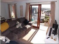 Corner Sofa (Excellent Condition)