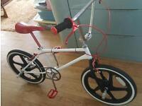 skyway mag wheels wanted