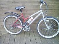 ADULT LADIES FALCON MOUNTAIN BIKE WITH 18 GEARS