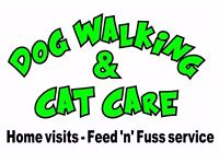 Run Doggy Run (Professional Dog Walking and Pet Services)