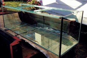 6 x 2 x 2 foot tank, enclosure and stand Toowoomba Toowoomba City Preview