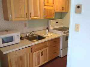 For rent bachelor apartment available may 1