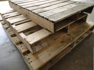 Wanted wood pallets