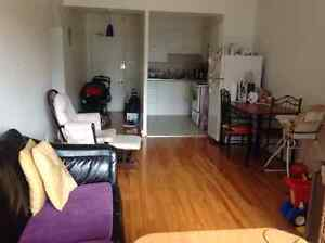 Vacation rental,downtown Montreal ,kids friendly