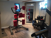 Private home gym personal trainer, South Etobicoke. Men/Women