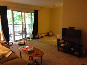 1 Bedroom Lease Takeover DEC 1st (close to uwo) London Ontario image 7