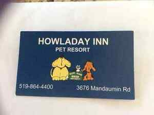 Howladay Inn Gift Certificate for One Week Stay for Dog or Cat