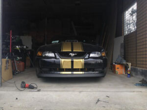 2003 Mach 1 supercharged