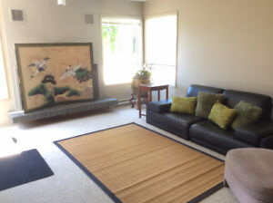 Furnished 1 bedroom, 20 steps to UVic 1 year lease
