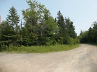 80.7 ACRES WITH DEVELOPMENT POTENTAL OUTSIDE HRM!!