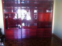 Modern Italian Lacquered Wall unit