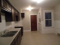 4 Bedroom, Heat Lights, Hot Water and Washer Dryer hookup