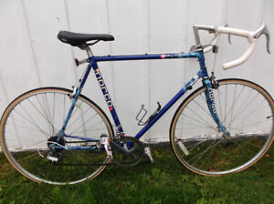 Awesome Norco 12spd Racer  56cm