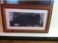 3 framed cat pictures