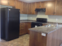 Two Bedrm Apt. With Washer/Dryer Avail. Sept 1st