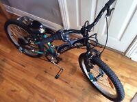 LOUIS GARNEAU EVA-S 2015 Bike junior roues 20 po et vit!