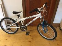 20 in Kids Bike