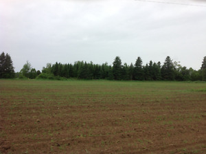 Wooded lots For Sale in Rexton New Brunswick