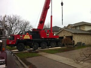 Tip Top Tree Removals and Services London Ontario image 8