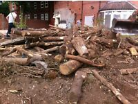 Logs!!
