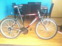 BARELY USED ALMOST BRAND NEW BICYCLE JUST FOR 195$