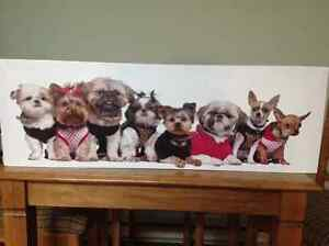 CANVAS PRINT OF SMALL DOGS