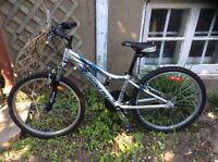 Beau vélo Louis Garneau roues 24 pouces et vitesses