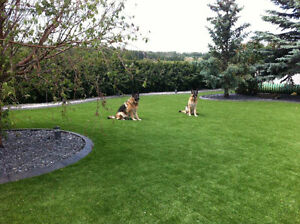 Artificial Turf-Never Cut, Water or Weed Your Lawn Again! Sarnia Sarnia Area image 4