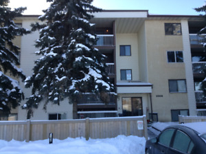 Spacious One Bedroom Apartment in Morinville