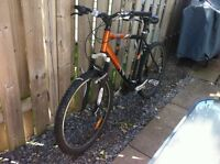 DiamondBack Copperhead Mountain Bike and DiamondBack Road Bike