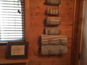 Clear Lake guest cottage for short term rental near RMNP