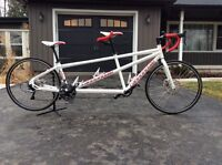 2012 Cannondale Road Tandem 2