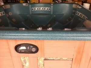Hot Spring Hot Tub for Sale