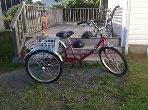 3 Wheeled Bike with Accessories