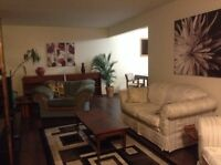 In Leduc  immediate basement suite for rent