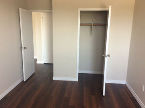 Beautiful, Updated, Clean 1 Bedroom Unit - Pet Friendly Stratford Kitchener Area image 3