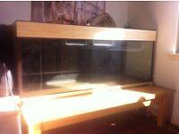 5 foot fish tank/vivarium