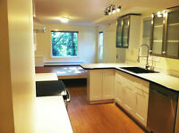 Just renovated! Spacious 1.5 Bdrm. suite in Art Deco house