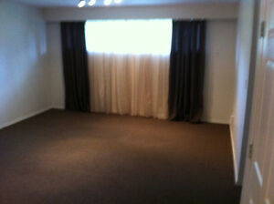 Available immediately - one bedroom basement in Brock.