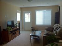 Walkout 2BR Suite in Sage Hills NW, RENT INCLUDES EVERYTHING